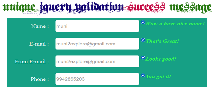 Unique jQuery Validation Success Message Using jQuery Validation Plugin